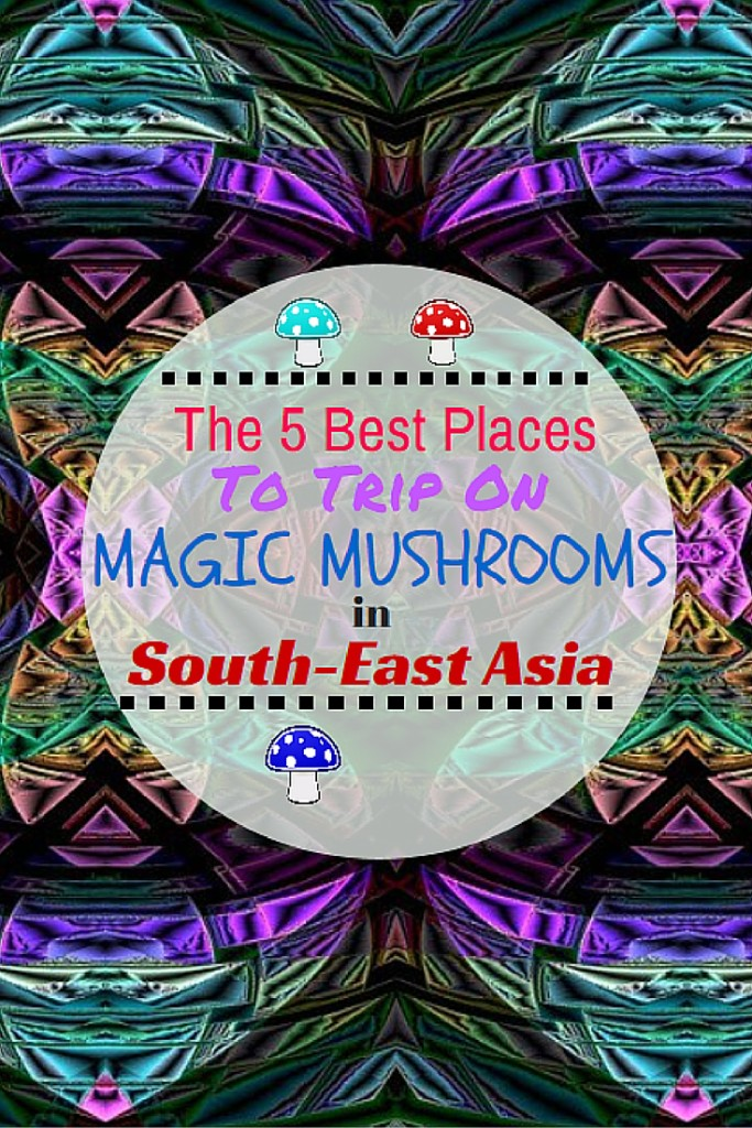 The 5 Best Places for Magic Mushrooms in South-East Asia